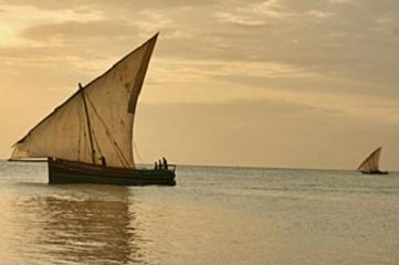 ~世界遺産セレンゲティ、ンゴロンゴロ、ザンジバル島を周遊~サファリ&ザンジバル9日間<カード決済OK>